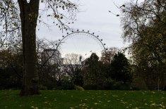 Homeward bound London (6)